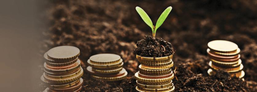 National Development Bank Plc Easy Saver Fixed Deposit