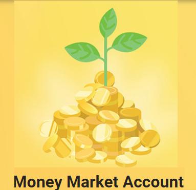 Sampath Bank Plc Money Market Account Fixed Deposit